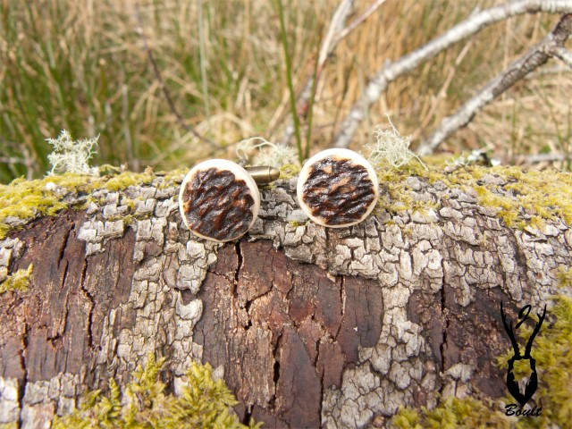 antler cufflinks on log