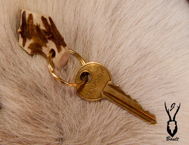roe antler key ring close up